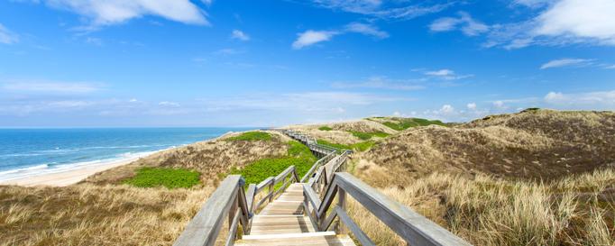 Segeln Friesische Inseln: Steg durch die Dünen