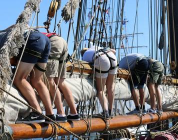 Segeln lernen - Crew an Bord eines Bootes